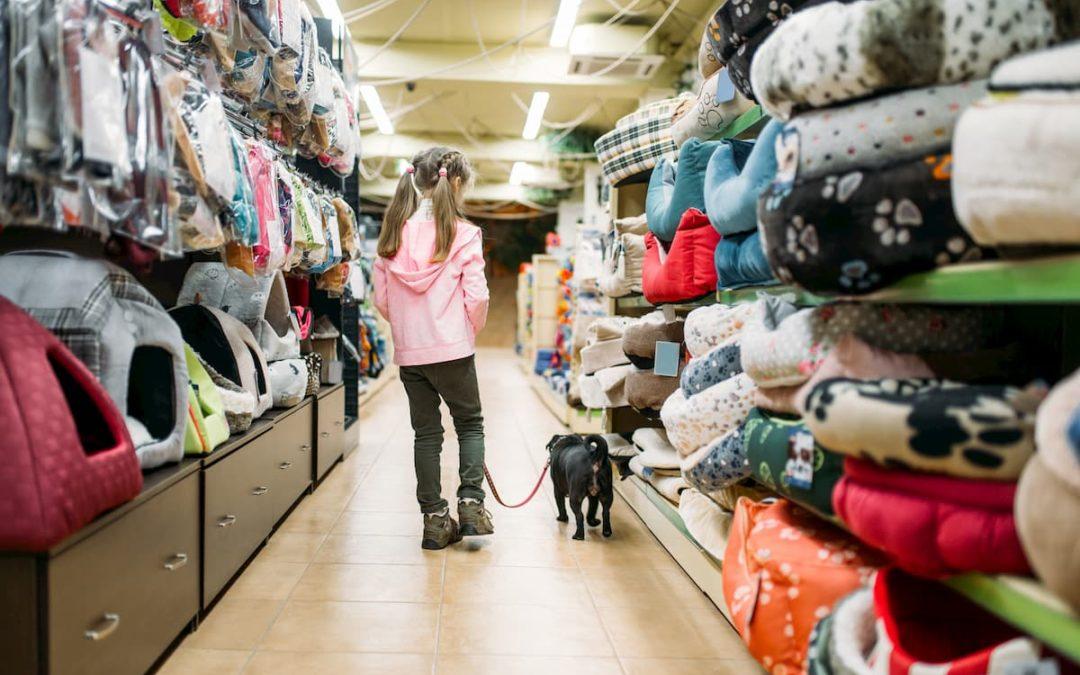Como Administrar Um Pet Shop: Dicas E Sugestões
