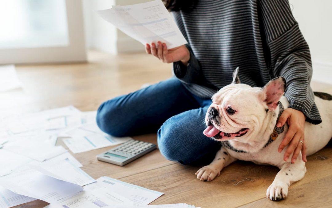 5 Dicas de planejamento financeiro para Pet Shop