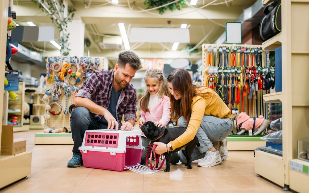 Como atrair e reter clientes em seu Pet Shop